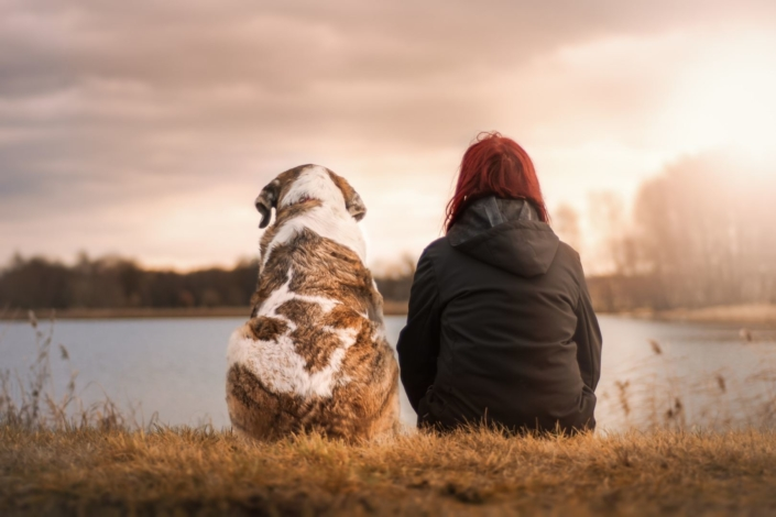 Leben mit Hund plastikfrei